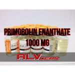 10 x  PRIMOBOLAN ENANTHATE 1000 MG OXYDINE METABOLICS