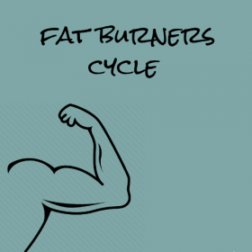 Fat Burner Cycle
