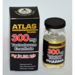 TESTOSTERONE ENANTHATE 300 10 Ml 300 Mg ATLAS