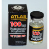 TESTOSTERONE PROPIONATE 10 Ml 100 Mg ATLAS